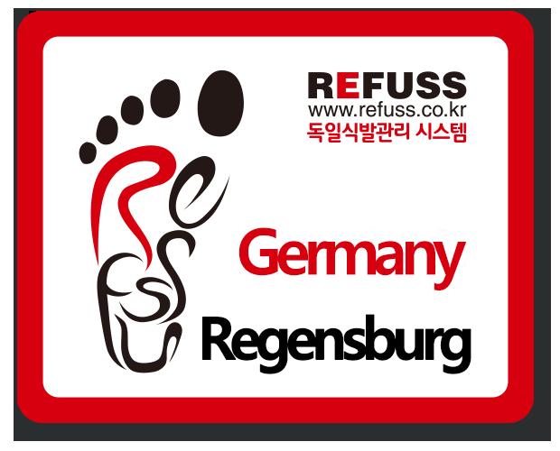 독일-레겐스부르크.png